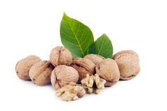 Walnuts without shell and inshell  walnut kernel blanched walnut kernels