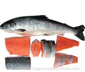 World-class tasmanian atlantic salmon 3-4 kg
