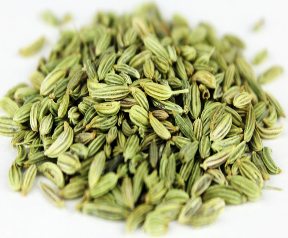 Fennel whole_3