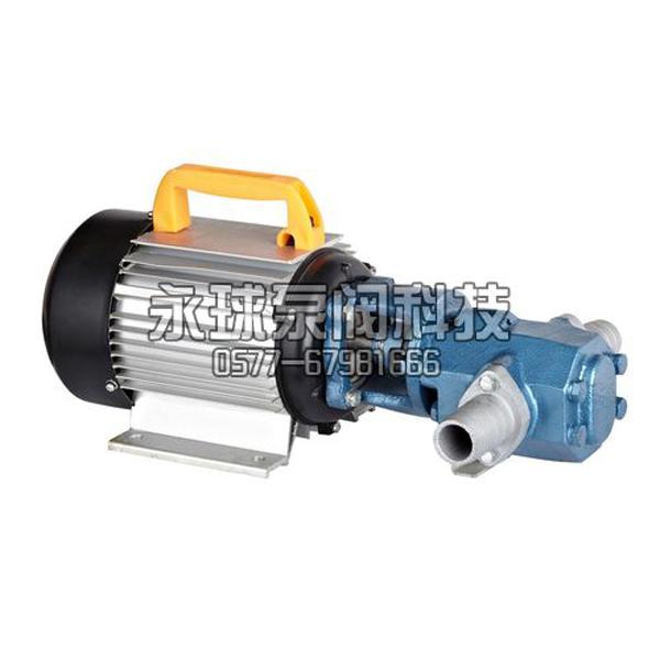 WCB Portable Gear Pump_2