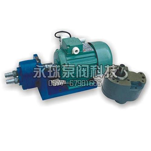 CB-B (S) Type Micro Gear Pump_2