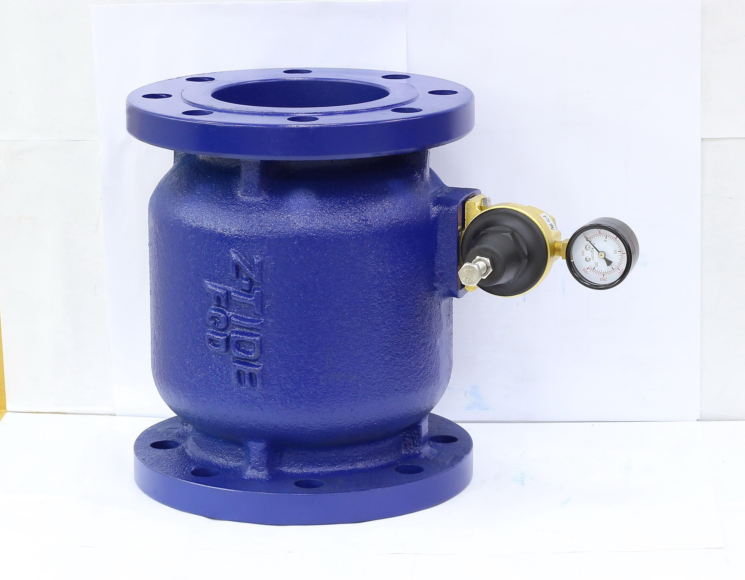 Pressure Relief Valve Ductile Iron 3 inch Flange_2