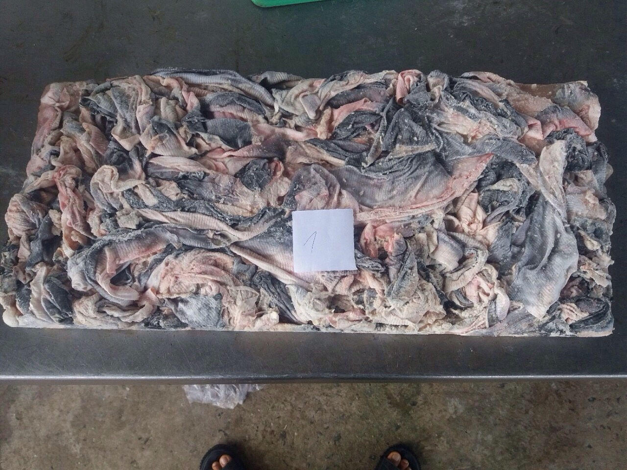 Frozen Basa Fish Skin,Dried Tilapia Scale,All kind of Frozen seafood ,Organic Chemicals,Animal feed & Spices & Grains._9