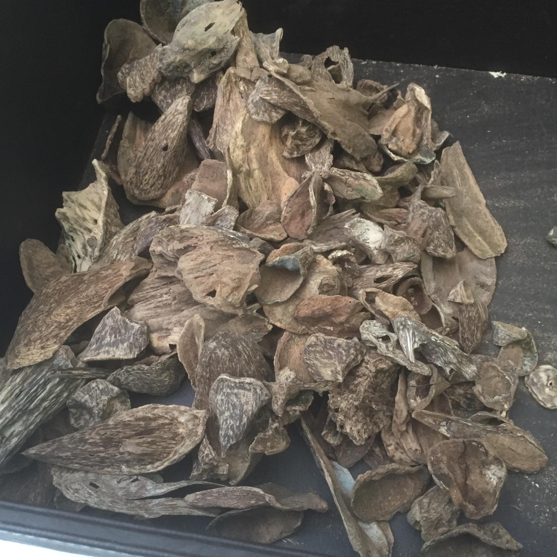Sumbawa Agarwood Chips or Sumbawa Oud Oudh Chips 2.45kg_3