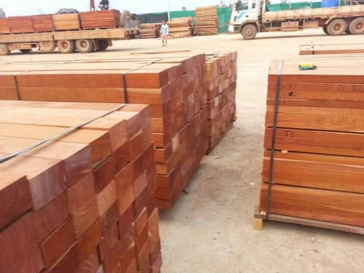 Timber Wood Logs and Sawn lumber for sale_2