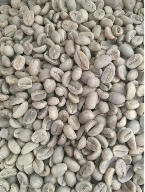 Arabica Green Coffee Beans_2
