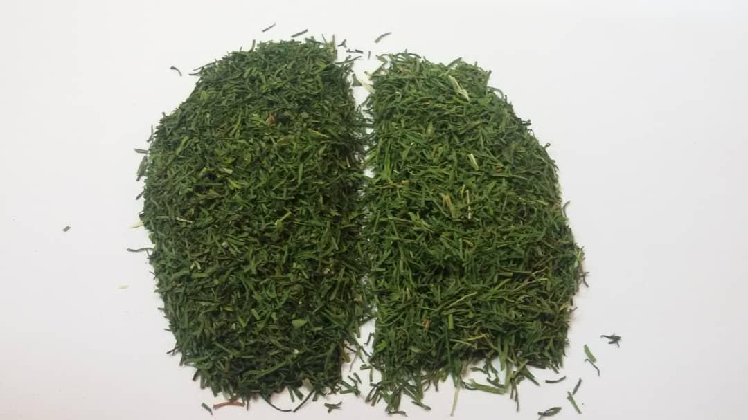 Organic Tarragon, Dill, Parsley, chievs,......._3