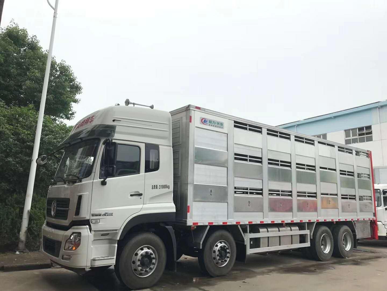 Livestock transportation trucks