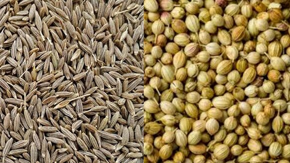 Best spices exporter in India_2