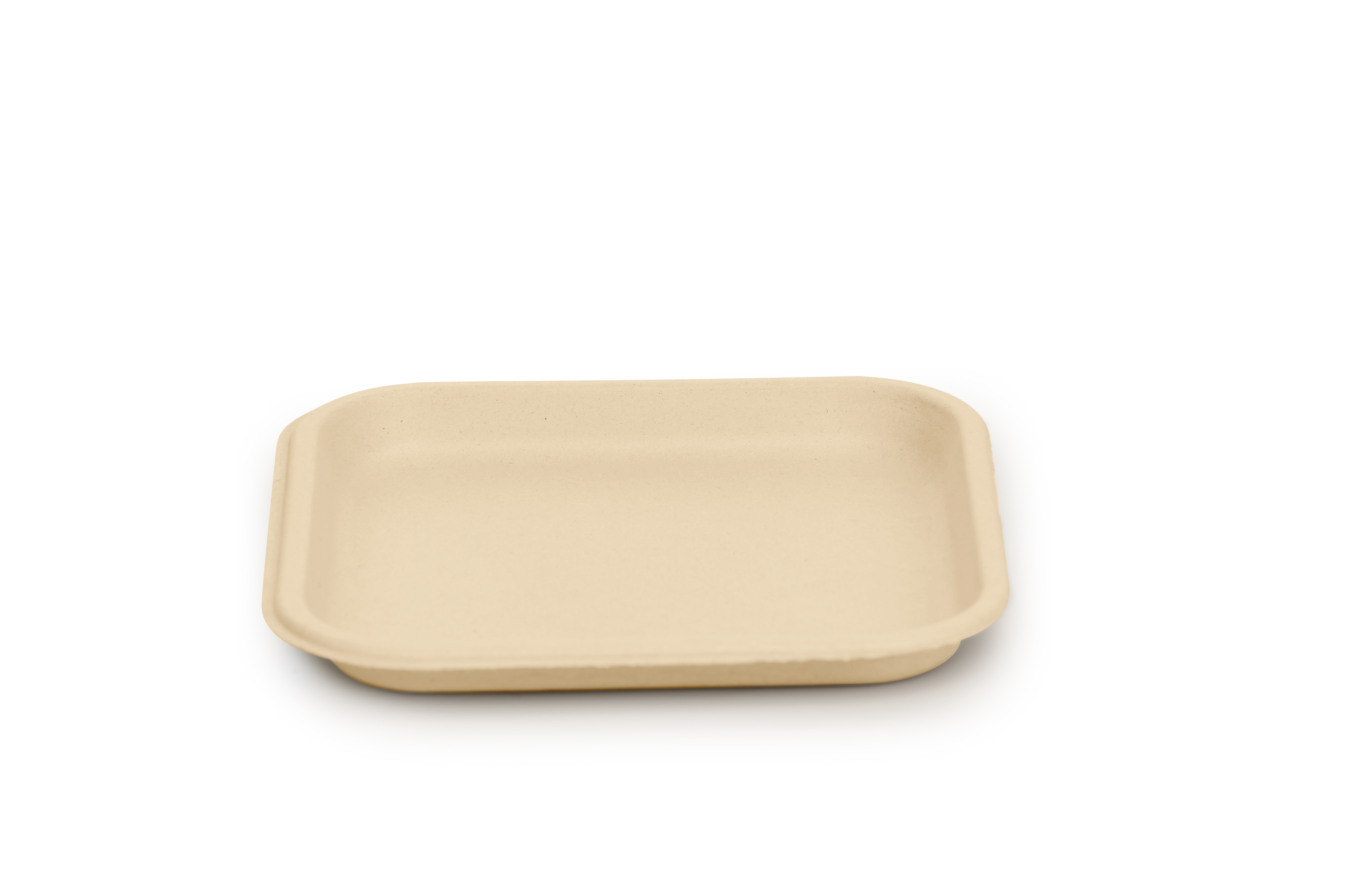 """Back to Nature 500 Pieces 10"""" Plate Bagasse Biodegradable_2"""