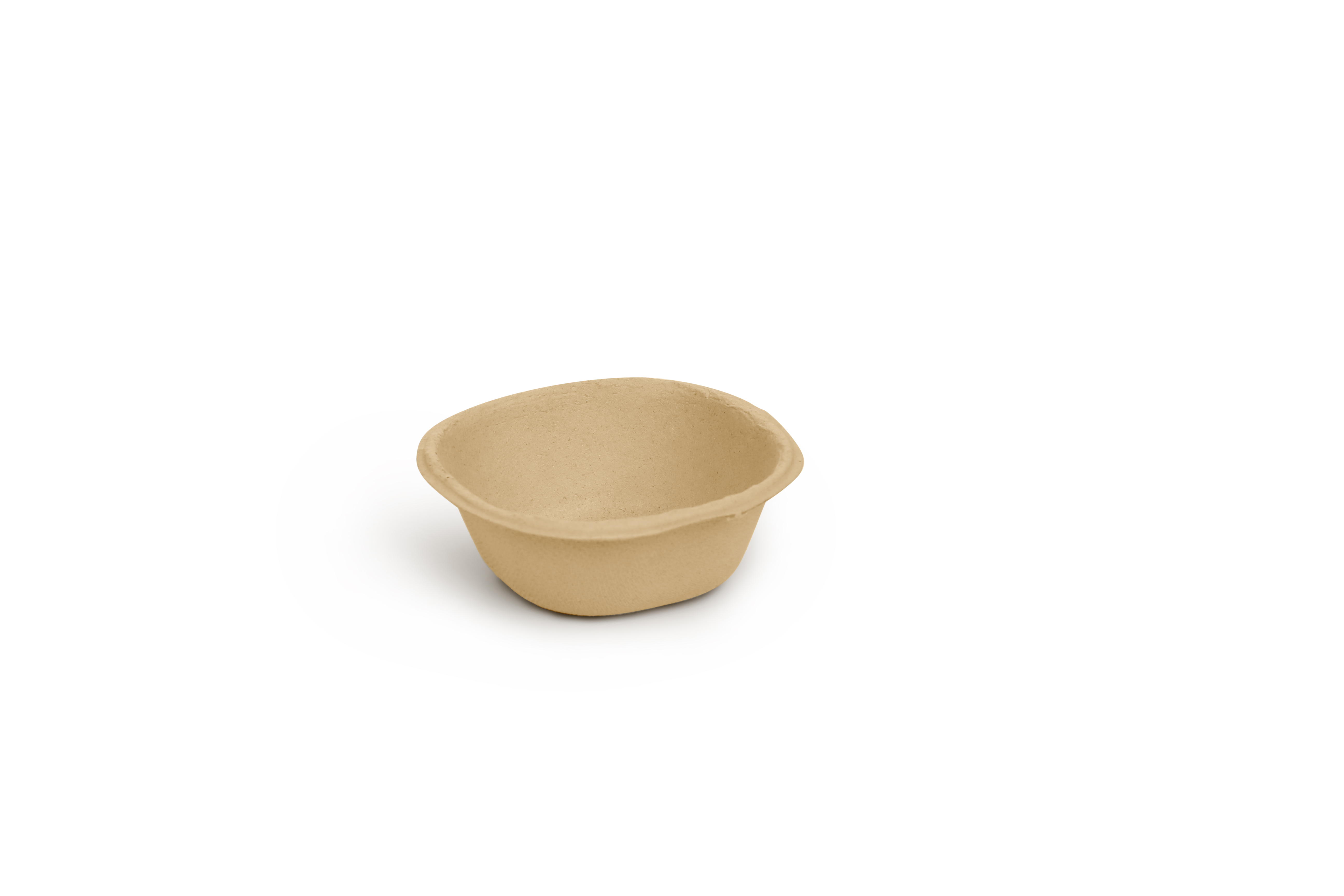 Back to nature 1000 pieces 120 ml bowl bagasse biodegradable