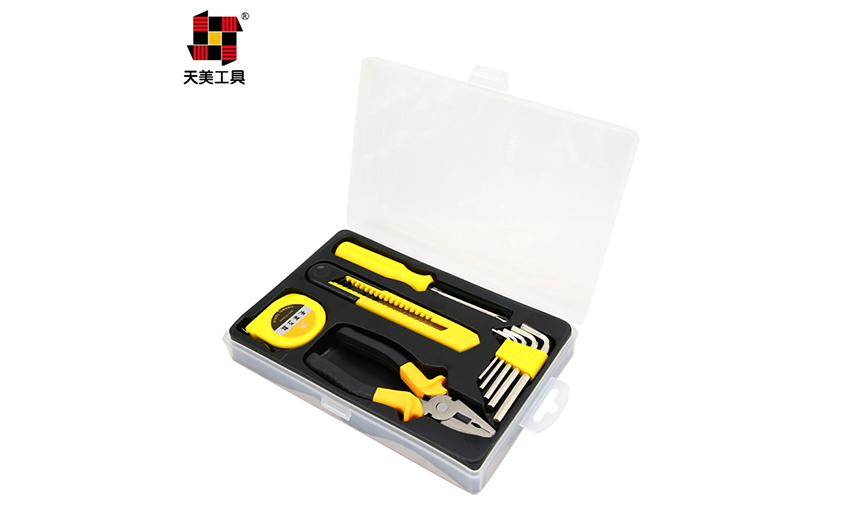 10PCS  HOME  OWNERS TOOL SET  TM-2066D_3
