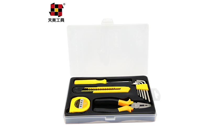 10PCS  HOME  OWNERS TOOL SET  TM-2066D_2