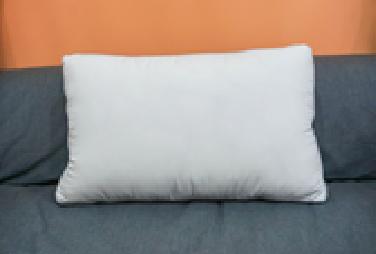 Spring pillow -a1021