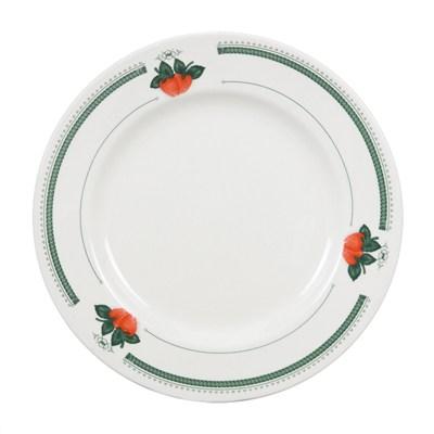 Coated Plate_3
