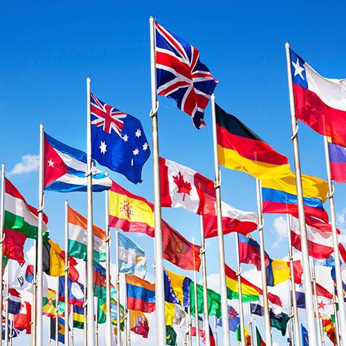 Flag&Banner_2