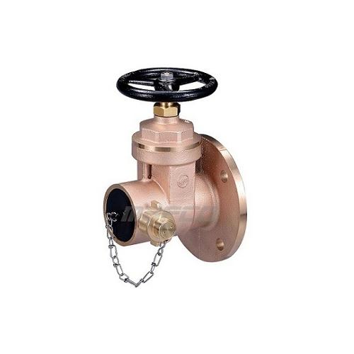 Gate pattern dry riser landing valve