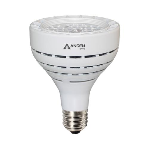 Light - PAR30 SMSD3030_2