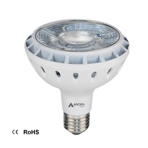 LED Light  PAR30COBMYL R13_2