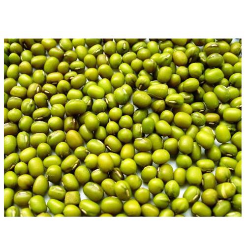Green Mung Bean_2