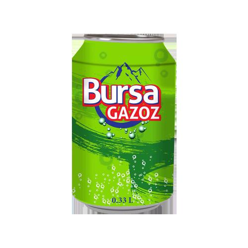 Bursa Gazoz- Lemonade Drink_2
