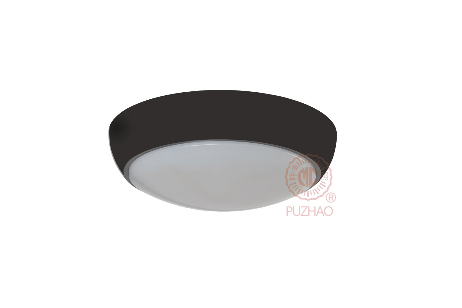 Pz-bhs 6w- led ceiling  lighting
