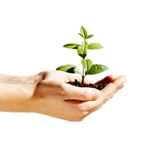 Environmental Services_2