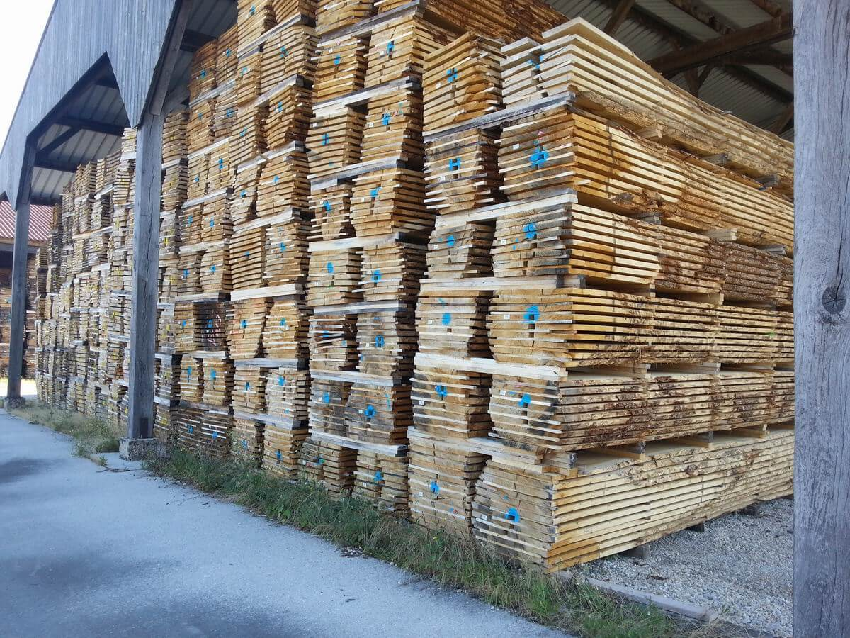 White oak unedged lumber
