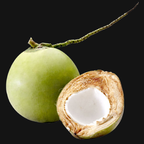 Concentrated coconut water_2