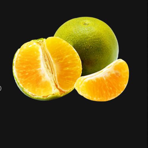 Concentrated Orange Juice_2